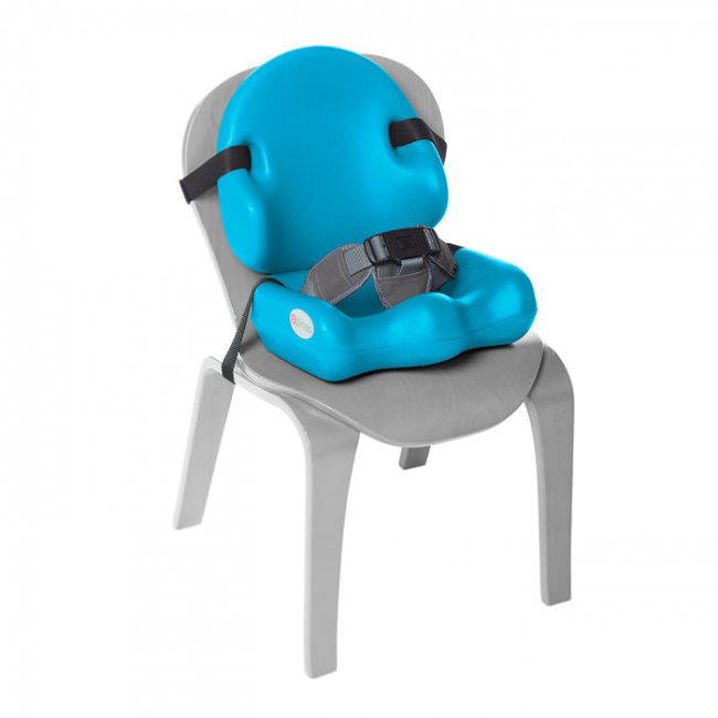 Special Needs Seating System