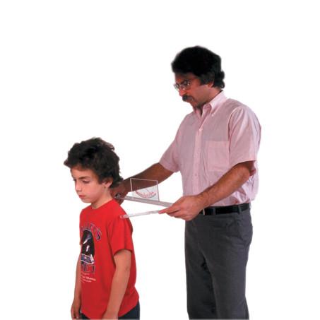 Baseline Body Level Scoliosis Evaluators