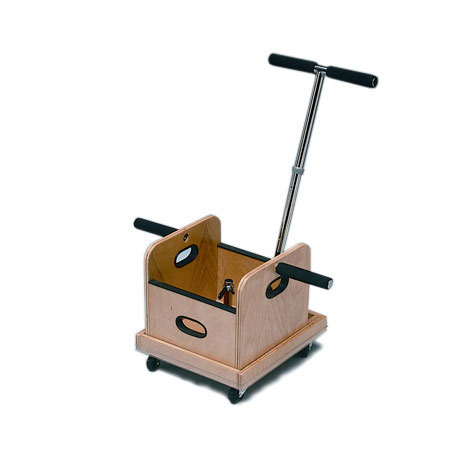 Baseline FCE Work Device Mobile Weighted Cart And Weighted Sled