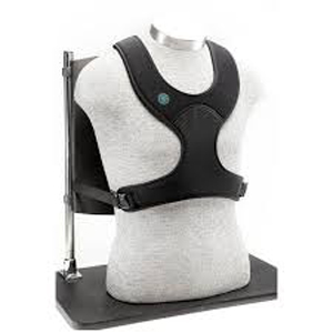 Bodypoint Stayflex Narrow Chest Support | Medicaleshop