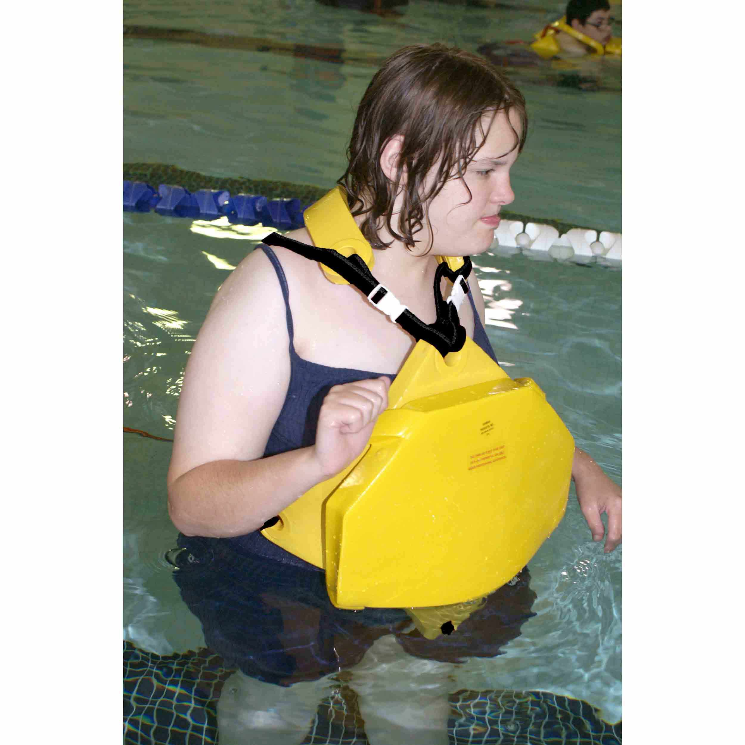 Danmar 8720 Delta Swim System | Danmar Products (8720)