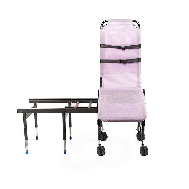 Ultima bath transfer chair
