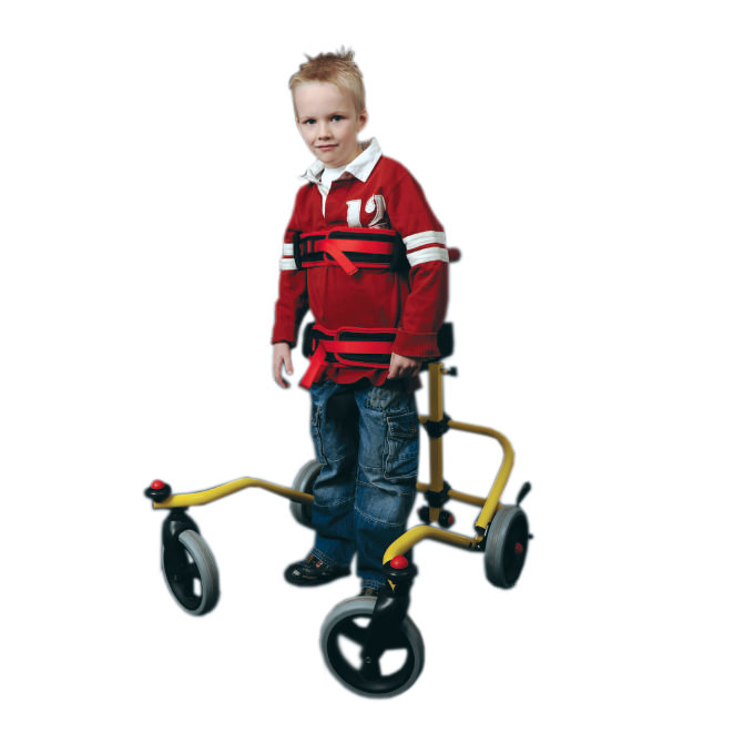 Buddy roamer posterior walking aid for special needs