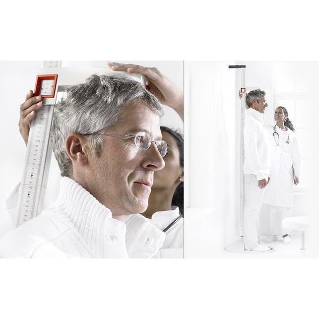 Seca Scale 213 Portable Stadiometer | Medicaleshop