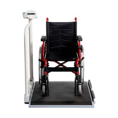 Seca 676 Wheelchair Scale With Foldable Handrail | Medicaleshop