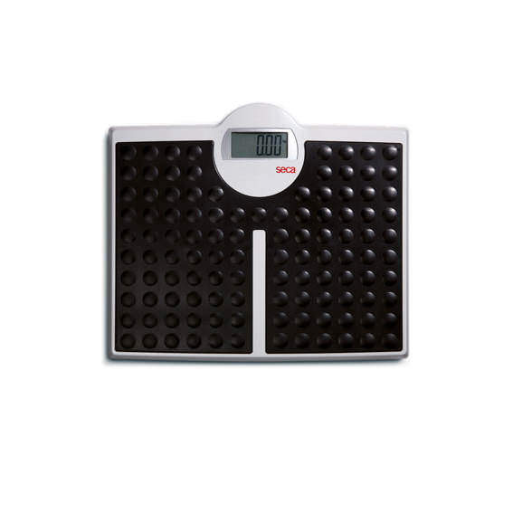 Seca 813 High Capacity Digital Flat Scale For Individual Patient Use