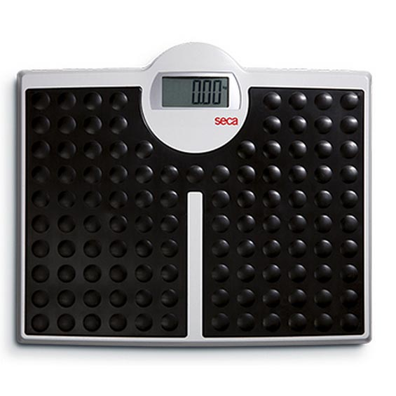 Seca 813 BT Digital Flat Scale With Bluetooth Interface | Medicaleshop
