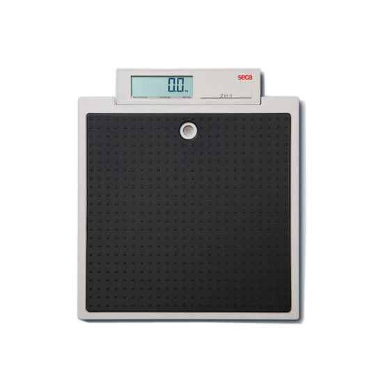 Seca 876 Flat Scale For Mobile Use
