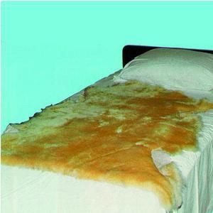 Sheepskin Sofsheep Double Medical Sheepskin Pad, 6' L x 2-1/2' W, Beige