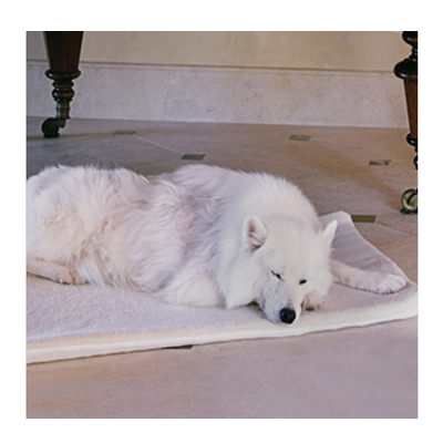Supracor stimulite mat for pets
