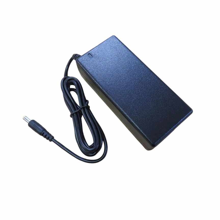 Savaria 29.4 VDC charger